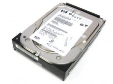 102822 MicroStorage/HP MBA3147RC-MS/HP, 247GB SATA HARDDISK